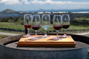 d4_11_niagara-falls-wine-tour